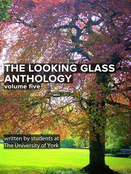 Volume 5 (2013/14) -eBook available